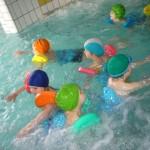 plavání 065